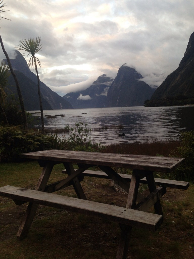 View of the Milford Sound from outside the lodge on the final night
