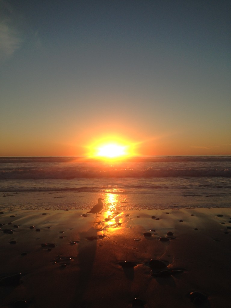 Unfiltered sunset in Encinitas.