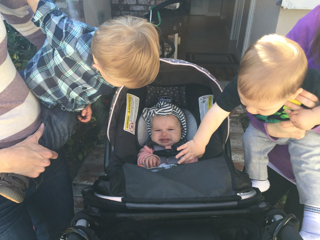 Siena wasn't sure what to think of Nolan and Jameson but soon she'll be able to play with them!