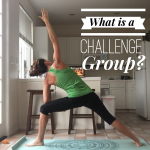 Challenge Groups Explained & July Results
