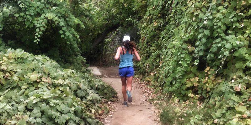 New York Marathon Training – Week 8